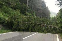Intervenții ale pompierilor nemțeni în urma furtunilor de ieri