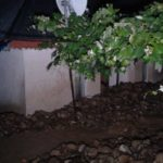 Inundatii anexa valeni (6)