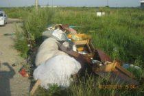 Amendați pentru că au depozitat ilegal deșeuri în cartierul Speranța