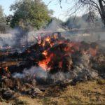 Incendiu baloti de paie 3 gospodării Brolesti (3)