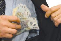 Doi administratori ai unei societăți comerciale cercetați pentru evaziune fiscală
