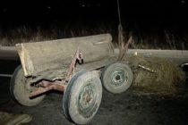 Căruțaș amendat cu 2.600 de lei în urma unui accident rutier