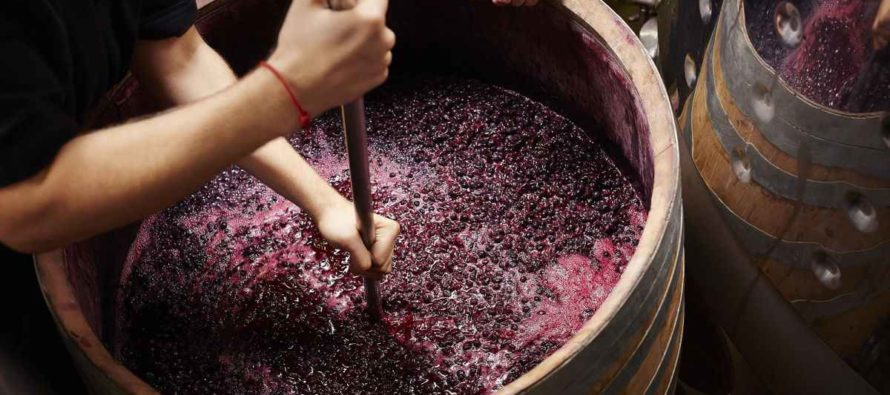 Avertizare de sezon: Atenție la mustul pus la fermentat!