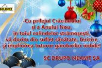 Felicitare de Crăciun DRUPO SA