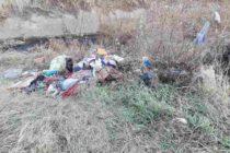 Zone din Piatra Neamț transformate de niște cetățeni în gropi de gunoi