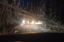 Drumul Lacul Roșu – Gheorgheni a fost închis temporar