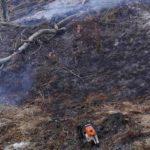 Incendiu vegetatie uscata Pipirig (2)