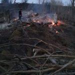 Incendiu vegetatie uscata Pipirig (3)