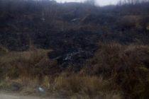 Incendiu de vegetație provocat de o țigare aprinsă