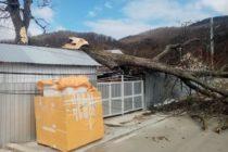 Mii de locuințe rămase fără curent electric în urma vântului foarte puternic