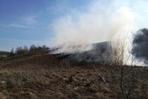Incendiu de vegetație la Ghindăoani, focul s-a întins pe o suprafață de 3 hectare