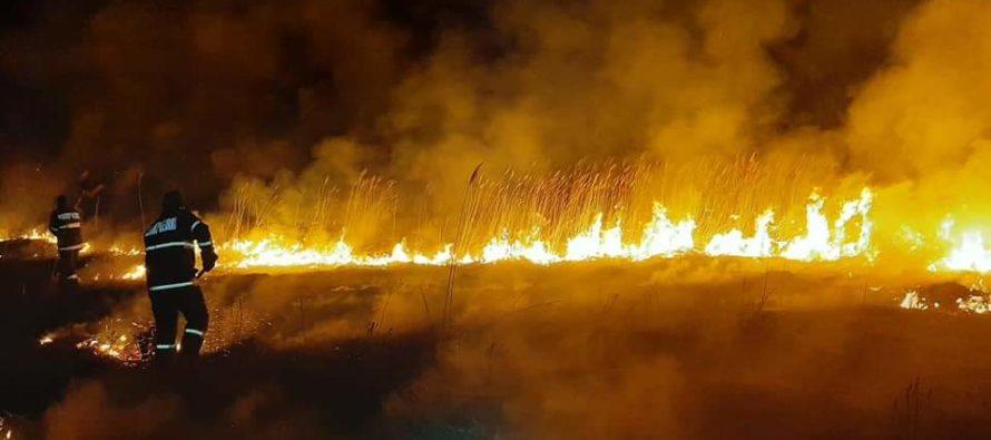 8 hectare de vegetație uscată au ars, seara trecută, în comuna Făurei