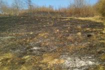 6 incendii de vegetație care au afectat 12 hectare, într-o singură zi