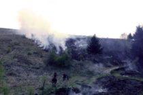 5 hectare de vegetație au ars în urma unui incendiu provocat intenționat