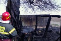Incendiu la o stână din Ingărești, 11 animale au ars de vii