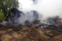 4 tone de fân au ars din cauza unori copii care s-au jucat cu focul