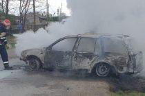 Păsări arse de vii în portbagajul unui autoturism