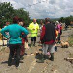inundatii locuinte cartierul Valeni (4)