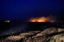 40 de hectare au ars într-un incendiu de vegetație în comuna Bozieni