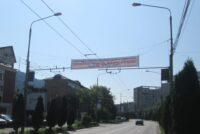 Reguli privind amplasarea și autorizarea materialelor publicitare electorale