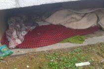 """Persoane fără locuință """"adunate"""" de polițiștii locali din adăposturile improvizate în Piatra Neamț"""