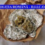 cannabis confiscat piatra neamt (2)
