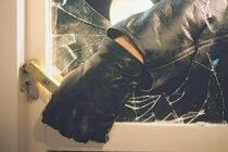 Doi tineri au furat mai multe scule electrice, bunuri din autoturisme și o bovină