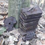 munitie neexplodata padurea nemtisor (2)
