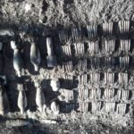 munitie neexplodata padurea nemtisor (3)