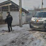 politia locala in cautarea stapanilor de caini (2)