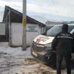 politia locala in cautarea stapanilor de caini (3)