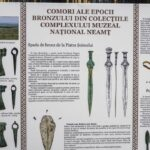 comori ale epocii bronzului piatra neamt (3)