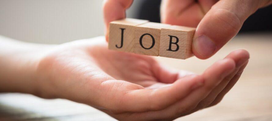 328 de locuri de muncă vacante în Neamț