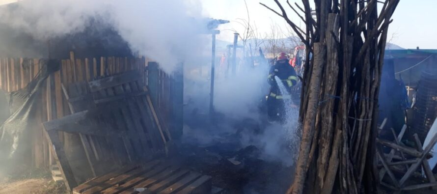 Animale salvate dintr-un incendiu de pompierii nemțeni, în comuna Grumăzești