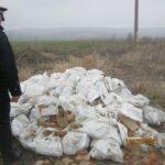 depozite ilegale de deseuri piatra neamt (2)