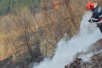 3 incendii de vegetație s-au produs astăzi în județul Neamț