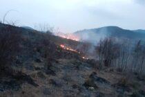 5 hectare de vegetație au ars într-un incendiu, în comuna Crăcăoani
