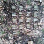 munitie neexplodata padurea nemtisor (1)
