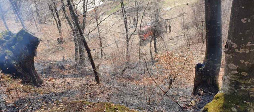 Incendii de vegetație la Bălțătești și Borlești, peste 4 hectare au ars