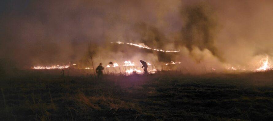 6 hectare de vegetație au ars în comuna Dochia