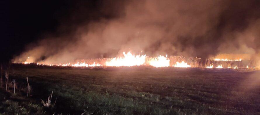 Incendiu de vegetație uscată în comuna Mărgineni