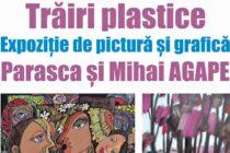 """""""Trăiri plastice"""" – expoziție de pictură la Biblioteca Județeană """"G. T. Kirileanu"""""""