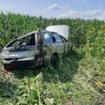 autoturism rasturnat in lan de porumb 2