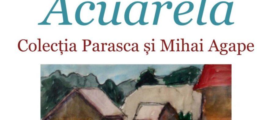 Expoziție de pictură semnată de Ilie Boca la Biblioteca Județeană