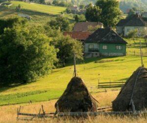 Fundația Noi Orizonturi lansează Clubul Meseriilor Rurale la Piatra Neamț