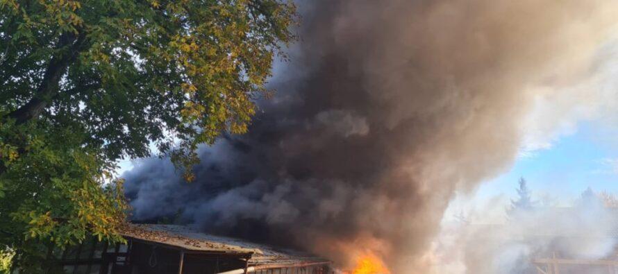 Incendiu puternic la o gospodărie din Viișoara, o casă și mai multe anexe au fost cuprinse de flăcări